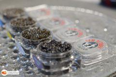 Caviar_dom_petroff-14