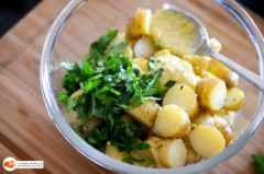 Salade_pommes_grenaille_salicorne-7