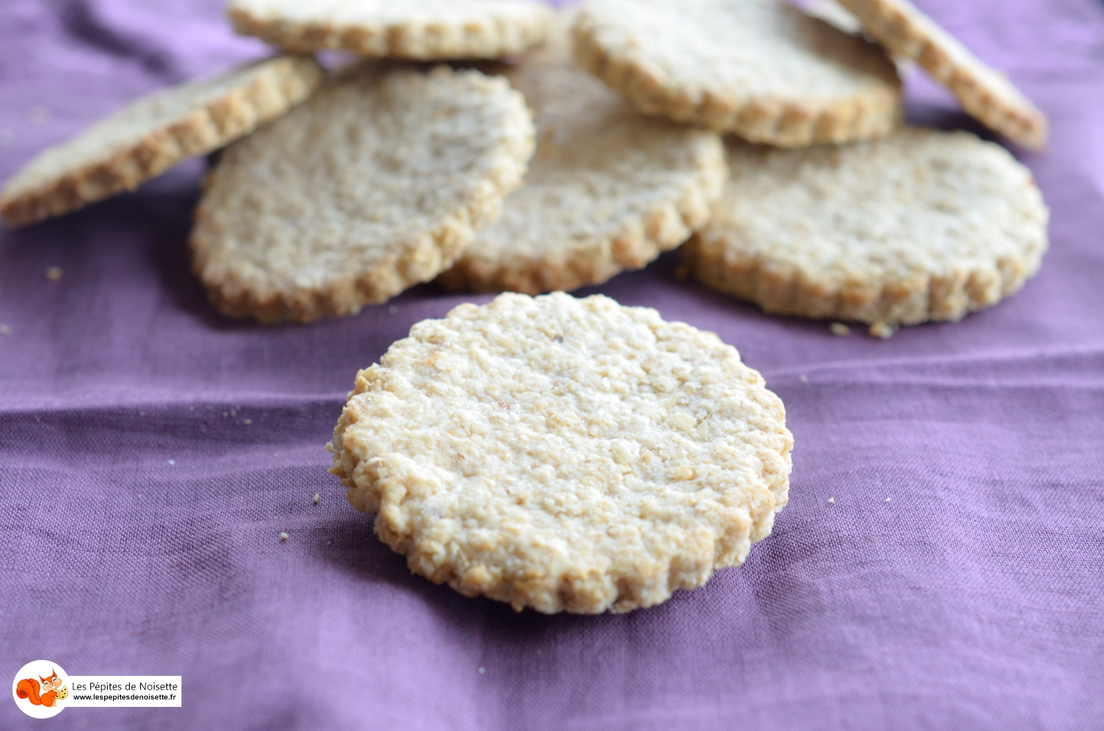 Biscuits Avoine Digestive (8 Sur 8)