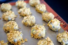 Nuggets_Poulet_Champignon_Chèvre_corn_flakes_sans_gluten (6 sur 12)