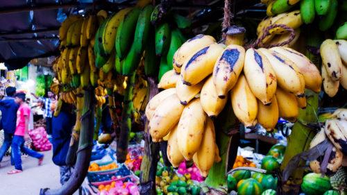 Venez, je vous emmène découvrir les saveurs Sri Lankaises