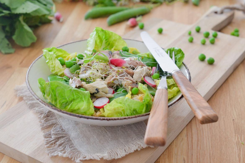 Salade Epeautre Vert Connetable (11 Sur 15)