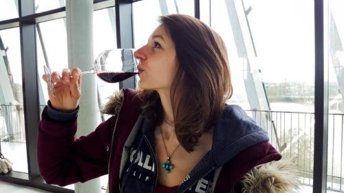 Cite Du Vin Bordeaux 8