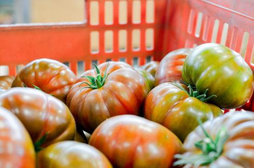 Tomates Saveur d'Antan