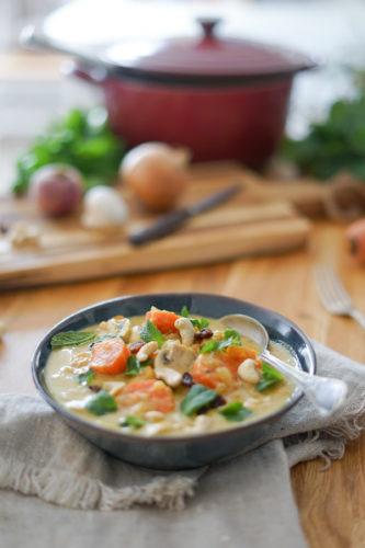 Recette Curry Vegetarien 5