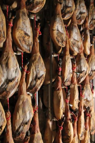 Ham Passion Tour Instit 10